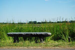 Publieke bank, Krokodi tijd, aangekocht, groene loper, Balk, Gaasterland, Friesland, Nederland, kunstkring gaasterland.