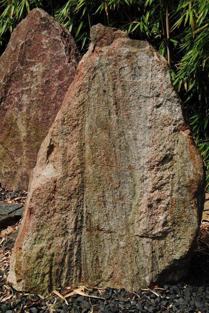 Deze Drentse zwerfkei is heel bijzonder! En bestaat uit diverse lagen graniet en gneis in mooie warme geel-roze tinten. Geschikt voor een bronsplaat, handmatig gehakte letters en bronsletters in een beperkte tekstgrootte. Op de bronsplaat kan meer tekst in kleine letters gemaakt worden. Natuurlijk zijn er ook meer mogelijkheden met deze mooie zwerfkei met een wel heel groen label! Formaat: ca. 60 x 80 x 25 cm.