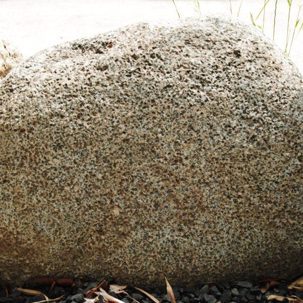 Deze zwerfkei heeft een wat pokdalig oppervlak vanwege de verweerde biotiet kristallen. En is vooral geschikt voor bronsletters. Maat: ca. 40 x 30 x 25 cm.